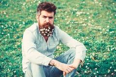 Битник на спокойной стороне сидит на траве Естественная концепция ухода за волосами Гай смотрит славно с цветками маргаритки или  стоковое изображение