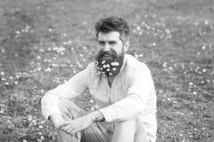Битник на счастливой стороне сидит на траве Гай смотрит славно с цветками маргаритки или стоцвета в бороде Естественный уход за в стоковое изображение