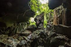 Бить пещеру, пещеру известняка около Bukit Lawang в национальном парке Gunung Leuser, Суматре, Индонезии Стоковые Изображения RF