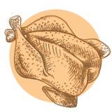 Благодарение Турция Мясо цыпленка Эскиз нарисованный рукой зажаренной курицы иллюстрация штока