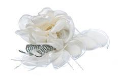 Благосклонности Weeding на белой предпосылке Стоковые Изображения RF