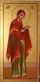благословленный virgin Стоковые Изображения RF