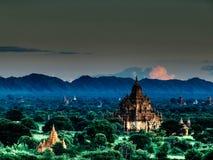 Благоустраивайте взгляд во время вечера на зоне виска Bagan с пышной растительностью в Мьянме Стоковые Изображения
