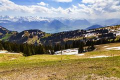 Благоустраивайте взгляд горы снега Альпов при сосна смотря от Стоковое фото RF