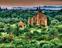Благоустраивайте взгляд на зоне виска Bagan с пышной растительностью в Мьянме Стоковые Фото