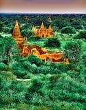 Благоустраивайте взгляд на зоне виска Bagan с пышной растительностью в Мьянме Стоковые Изображения