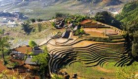 Благоустраивайте взгляд полей риса Sapa окруженных горами, Вьетнам Стоковая Фотография RF