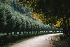Благоустраивайте красивый парк осени стоковая фотография rf