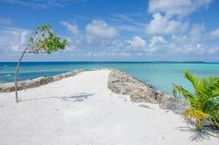 Благоустраивайте побережье Индийского океана на Мальдивах стоковое изображение rf