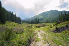 Благоустраивайте путь через горы на пасмурный летний день стоковое изображение rf