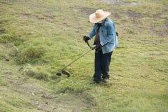 Благоустраивать археологических раскопок Стоковые Фото