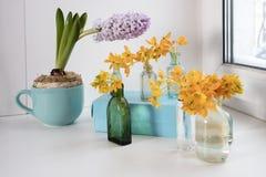 Бледное hyacint в голубой чашке и зацветая желтом Ornithogalum Dubium в прозрачной вазе бутылки вместо Стоковая Фотография