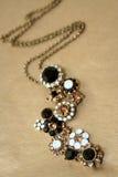 блестящее ожерелье Стоковое Фото