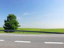 близкая зеленая трасса вверх Стоковые Фото