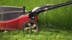 Близкая поднимающая вверх съемка резать траву с электрической газонокосилкой акции видеоматериалы