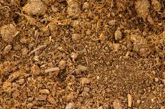 близкая почва вверх Стоковые Изображения RF