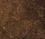 близкая почва вверх Стоковое Изображение RF