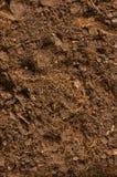 близкая почва вверх Стоковая Фотография RF