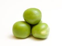 близкие зеленые горохи поднимают белизну Стоковое Изображение RF