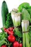 близкие свежие редиски зеленого лука поднимают овощи Стоковое Изображение RF