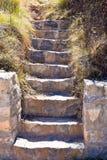 близкий вверх лестницы сделанной с шагами бетона и камней в саде ( стоковое изображение