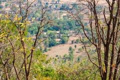 Близкий взгляд пар деревьев с взглядом ландшафта индийского поля от вершины скалистой горы стоковые изображения rf