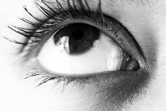 близкий глаз вверх Стоковое Изображение RF