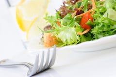 близкий зеленый салат листьев вверх Стоковые Фото