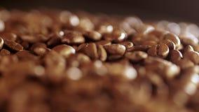 близкий кофе вверх макрос кофе завтрака фасолей идеально изолированный над белизной макрос кофе завтрака фасолей идеально изолиро сток-видео