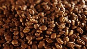 близкий кофе вверх макрос кофе завтрака фасолей идеально изолированный над белизной макрос кофе завтрака фасолей идеально изолиро акции видеоматериалы