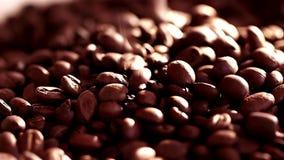 близкий кофе вверх макрос кофе завтрака фасолей идеально изолированный над белизной Медленная солнечность mothion на семенах кофе акции видеоматериалы