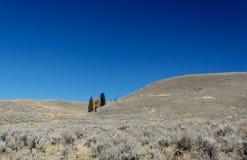 близкий национальный парк холмов gardner к yellowstone Стоковое Изображение RF