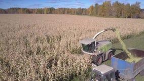 Близкий передний верхний трактор взгляда с грузовиком собирает мозоль массовую сток-видео