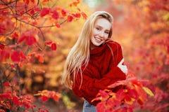 Близкий поднимающий вверх портрет красивой девушки около красочных листьев осени стоковые изображения rf