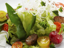 близкий салат вверх Стоковая Фотография