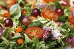 близкий свежий салат вверх Стоковая Фотография RF