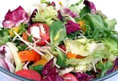 близкий свежий салат смешивания вверх Стоковое Изображение