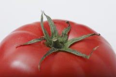 близкий томат вверх Стоковые Изображения RF