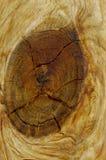 близкий узел вверх стоковая фотография rf