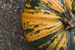 Близкий урожай желтого цвета и зеленого цвета striped тыква Стоковые Изображения