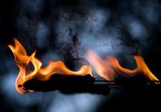 близкий язык пламени вверх Стоковое Изображение RF