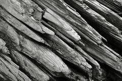близкий driftwood вверх Стоковые Изображения RF