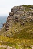 близкое море утесов крутое Стоковые Фотографии RF