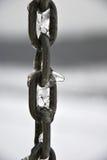 близкое цепи, котор замерли вверх Стоковое фото RF