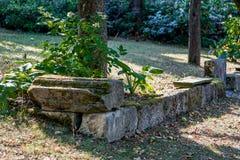Близко-естественный архитектурноакустически конструированный сад стоковая фотография rf