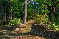 Близко-естественный архитектурноакустически конструированный сад стоковое изображение