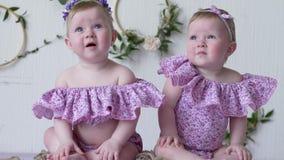 Близнецы в розовых одеждах представляя на photoshoot на предпосылке стены с оформлением акции видеоматериалы