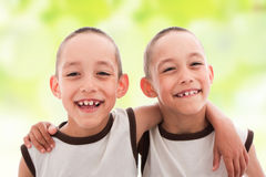 близнецы Стоковое Изображение