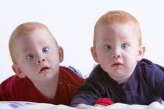 близнецы стоковые изображения rf