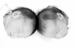 близнецы Стоковое Фото